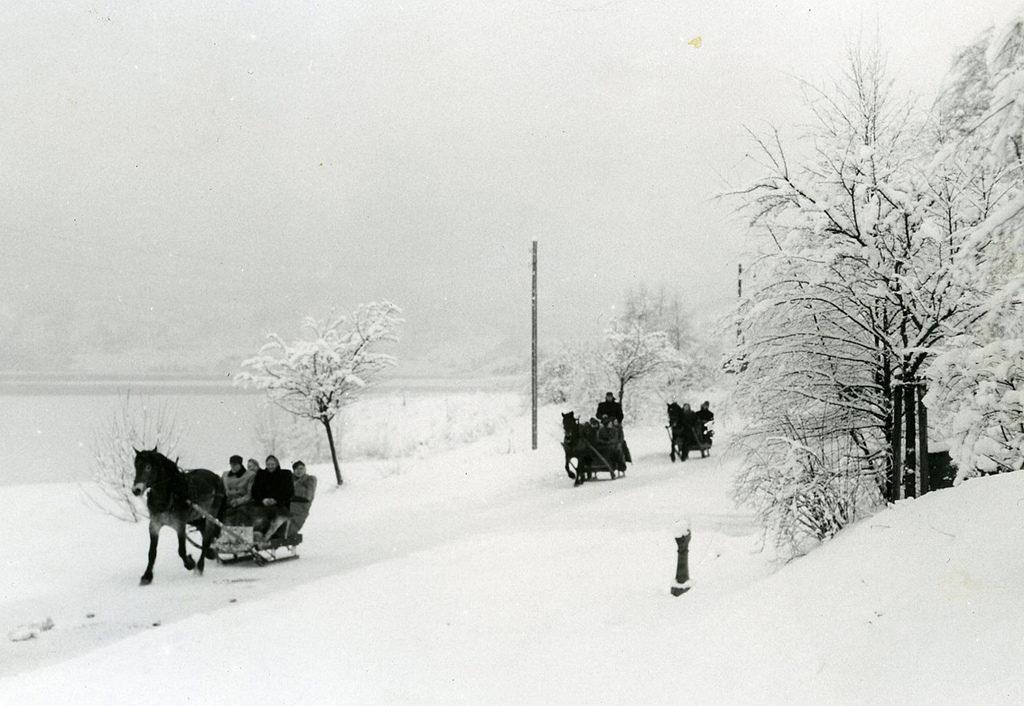 Hest og slede på Voss i 1903.