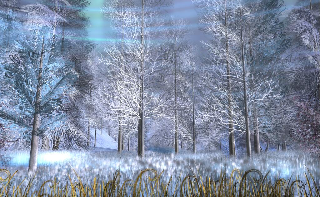 En slags vinter.